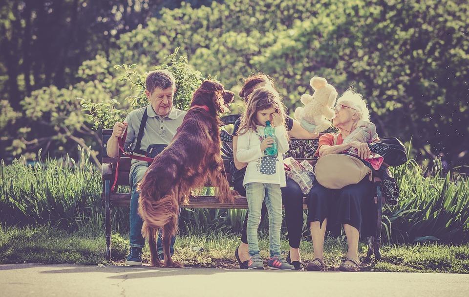 Tilføj en hund til familien og få masser af glade stunder for dig og dine børn